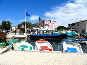 barques electriques face aux coches d'eau